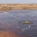 Dallol-Lac Jaune (21)||<img src=./_datas/9/y/7/9y76ouy5th/i/uploads/9/y/7/9y76ouy5th//2017/12/13/20171213095032-ed17e051-th.jpg>